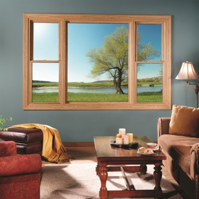 tan double hung picture window living room